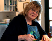 Artists of Whidbey Island - Diane Tompkinson